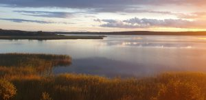 Naturbild saltvik